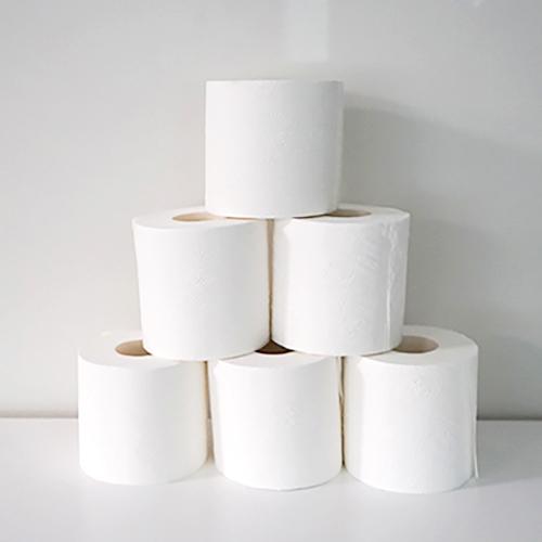 Premium Toilet Paper Rolls